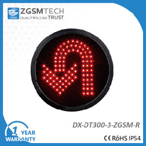 300mm Red LED Turn Signal Modules