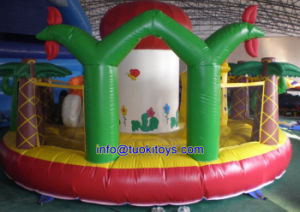 Giant and Big Inflatable Bouncer for School and Church Festivals (A129) pictures & photos