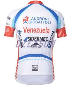 Fashionable Advertising Free Design Professional Cycling Jerseys pictures & photos