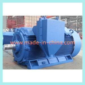 Y2 Series High Voltage Compact Structure AC Motor pictures & photos