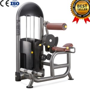 China Famous Brand Yanre Fitness/ Gym Equipment Back Extension pictures & photos