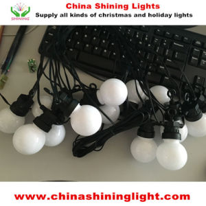 New White Color Multi Color Party Decoration LED Lights pictures & photos