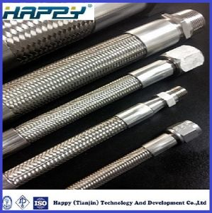 Hydraulic PTFE Hose SAE100 R14 pictures & photos