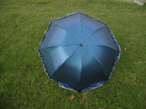 Fold Umbrella (JS-038) pictures & photos