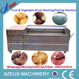 500kg/H SUS Brush Washing Machine