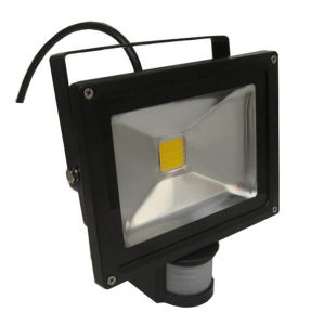 20W IP65 85-265V IR Controller PIR LED Floodlight pictures & photos