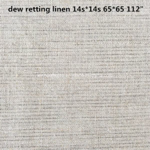 Linen Fabric/Ramie Fabric/Dew Retting Linen/Cotton Linen Fabric pictures & photos