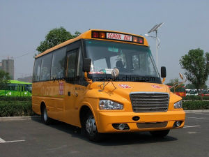 China High Qualtiy Diesel School Bus with 15 to 38 Seats pictures & photos