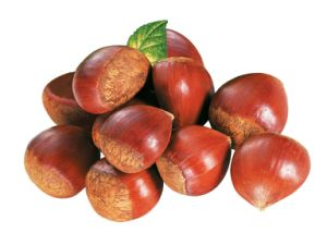 Fresh New Crop Chestnut with Delicious with Good Price pictures & photos