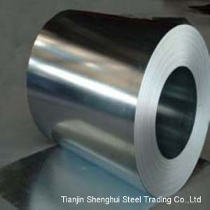 Premium Quality Stainless Steel Coil (AISI301) pictures & photos
