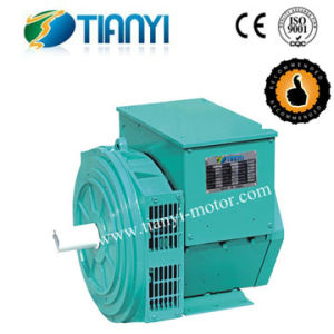 TWG Brushless Generator with CE & ISO Standard pictures & photos