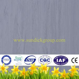 Anti Bacterial Homogenous PVC Floor for Public Place
