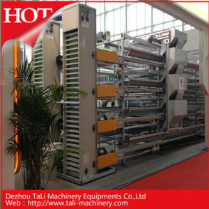 Hot Sales for China Egg Professional Collection System