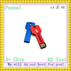 Custom Logo Paypal Payment Key USB (GC-K001) pictures & photos