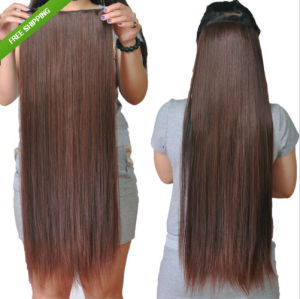 Clip in Hair/Clip on Hair pictures & photos