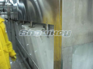 Block Ice Making Machine pictures & photos