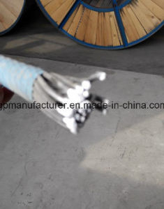 Bare Conductor ACSR, Overhead Electric Service Drop Cable pictures & photos
