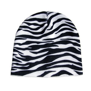 New Style Fashion Beanie Hat (JRK034) pictures & photos