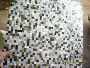 Decoration Shell Mosaic (Seashell) pictures & photos