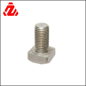 Stainless Steel Square Head Bolt pictures & photos