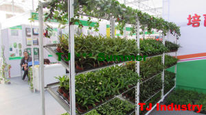 American Market Welding Mesh Plant Pot Cart pictures & photos