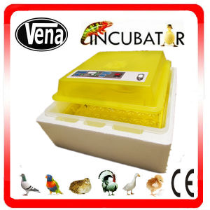 Best Selling Va-48 Small Size Full Automatic Duck Egg Incubator for Sale pictures & photos