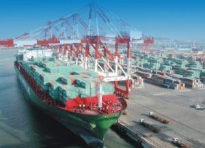 Logistics Shipping From Ningbo/China to Algeciras La-Spezia Livorno Destination Truck pictures & photos