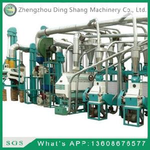 Corn Processing Equipment FTA150/Flour Mill pictures & photos