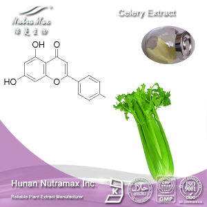 100% Natural Celery Extract (Apigenin 2%~5%, Ratio: 4: 1~20: 1) -Nutramax Supplier