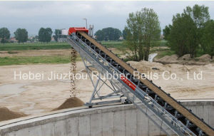Nylon Conveyor Belt pictures & photos