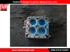 RM0301059 Cap Injection Mould pictures & photos