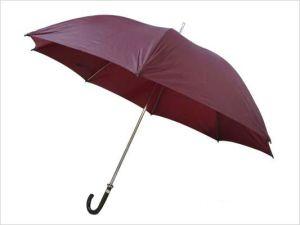 China Umbrella Straight Umbrella (BR-ST-100) pictures & photos