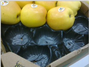 Economic Price Good Quality Export Standard Disposible Plastic Tray Liner for Apple in Food Grade pictures & photos
