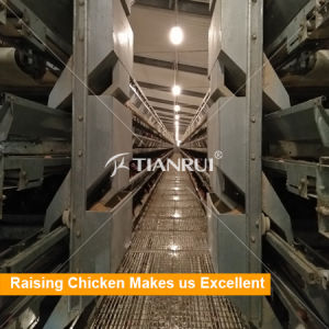 Tianrui Hot Selling H Type Automatic Battery Layer Poultry Cage pictures & photos
