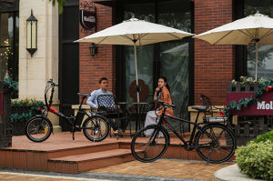Easy Rider Mini Electric Chopper Pocket Folding Bike pictures & photos