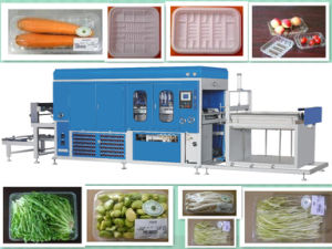 Vacuum Forming Machine for Vegetables Tray (BC-700/1200A)