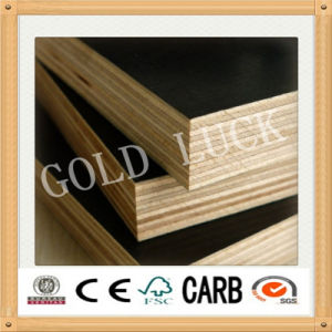 Marine Grade Film Faced Plywood for Concrete Formwork pictures & photos