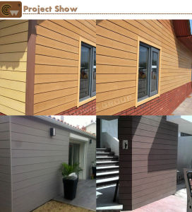 Wood Plastic Composite Wall Cladding Wateproof Wall Panel (TW-04W) pictures & photos