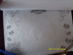 Latest Painting Paper Roll Thermal Paper Roll pictures & photos