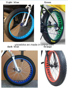 1000W 48V Electric Bicycle/Fat Tire Cheap Moumtain Electric Bicycle/Snow Electric Bicycle pictures & photos