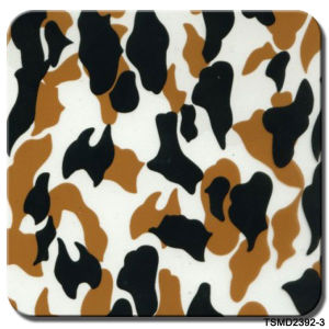 Tsautop 1 Meter Width Camo Hydrographic Printing Film pictures & photos