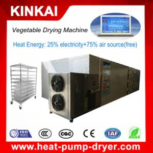 Good Sale Cassava Chips/Onion Slice Drying Machine/Dry Vegetable Dryer pictures & photos
