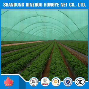 Green HDPE Sun Shade Netting for Agriculture Windbreak pictures & photos