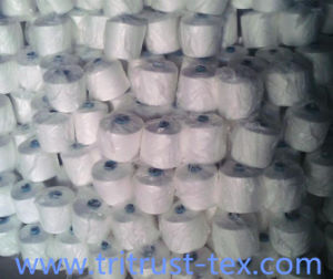Spun Polyester Sewing Yarn (2/20s) pictures & photos