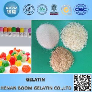 Halal Edible Gelatin Granular pictures & photos