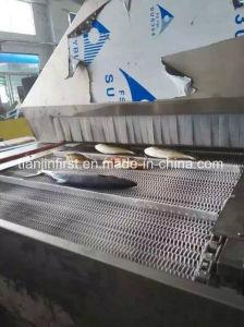 Seafood Tunnel Quick Frozen Liquid Nitrogen Equipment pictures & photos