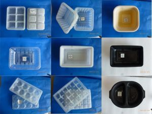 PP&Pet&PS&Foam Material Wholesale Food Packaging Containers for Frozen Food pictures & photos