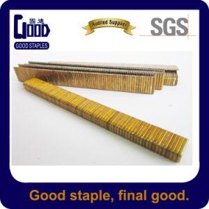Golden Color Medium Wire Furniture Staples, Bea Staple (410K)