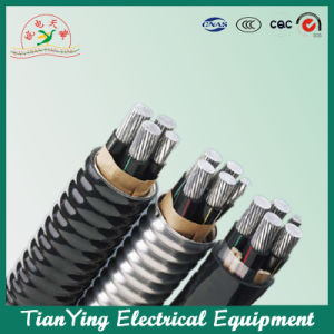 XLPE Insulated Sta Power Cable