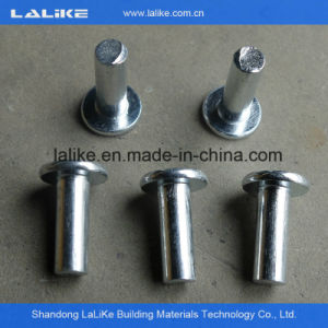 Ringlock Scaffolding Accesories, Galvanized Ringlock Scaffolding System for Sale